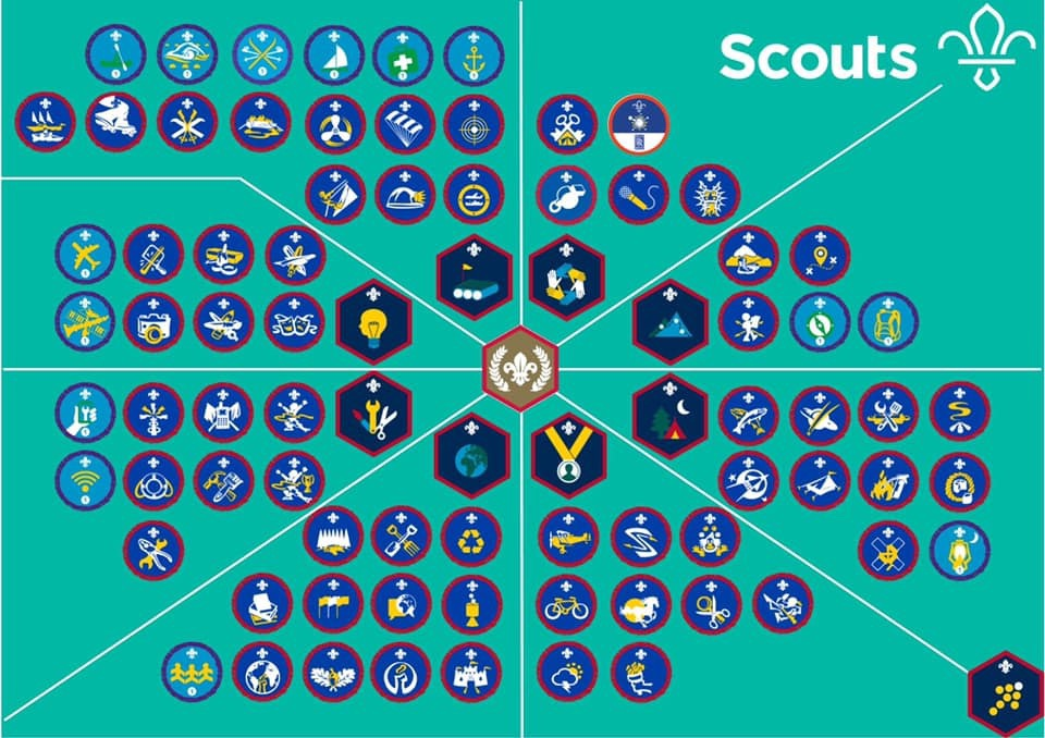 See Your Sea Scout's Badges Here